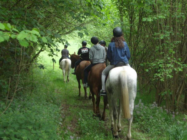 Ecoparque paseo a caballo ecoparque el juncaral