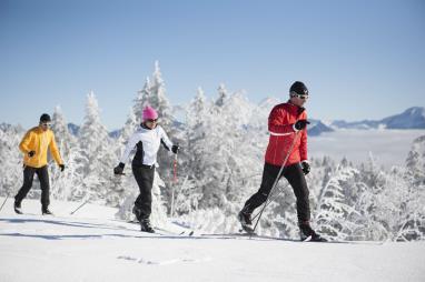 otros-esqui-de-fondo-pirineos-esqui-de-fondo-en-el-pirineo-aragones.jpg